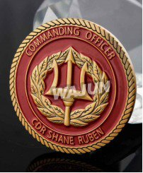 3D cheap rope cut edge gold challenge coins promotion